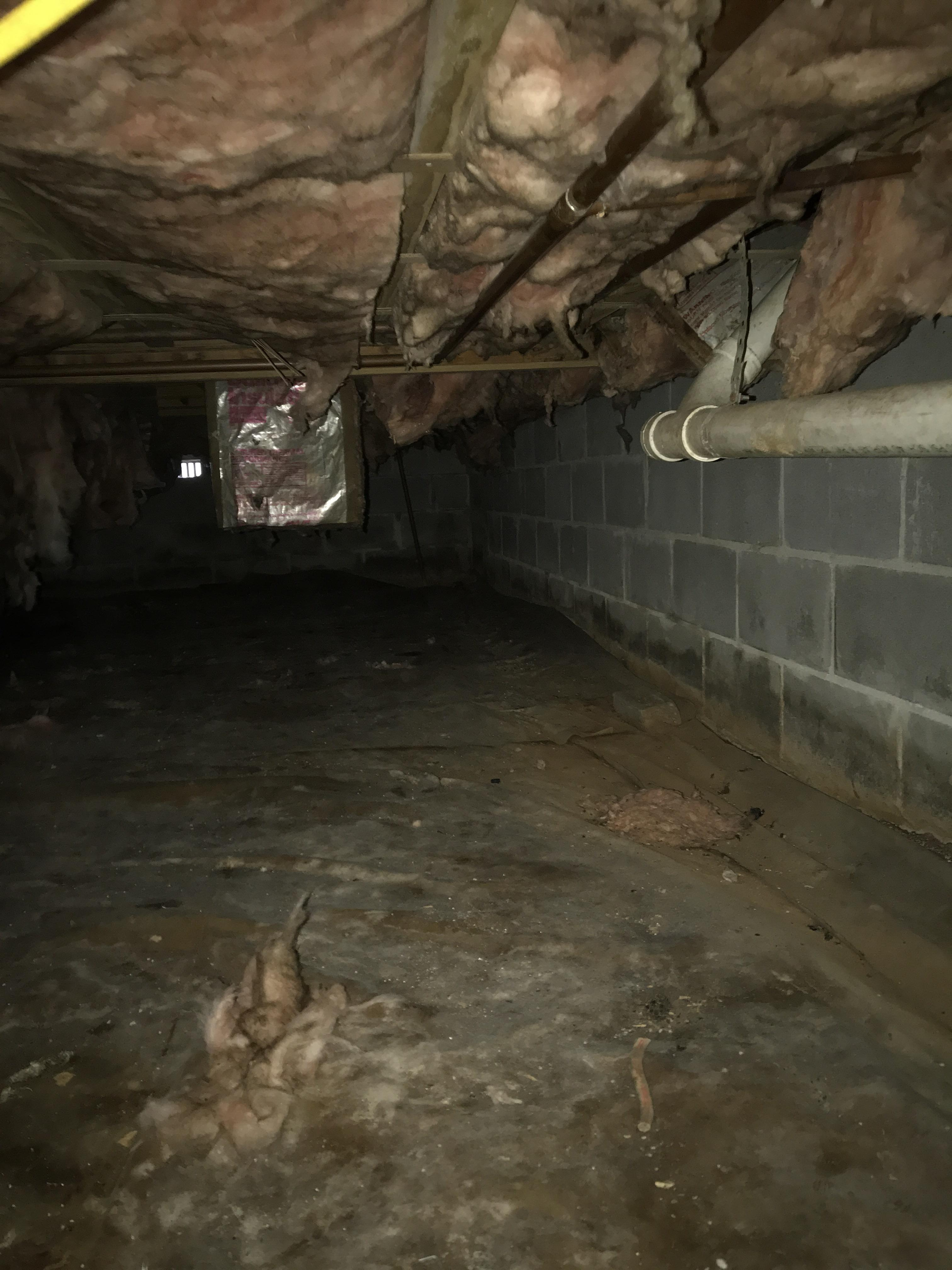 Water intrusion and water marks on cinder block walls in crawlspace