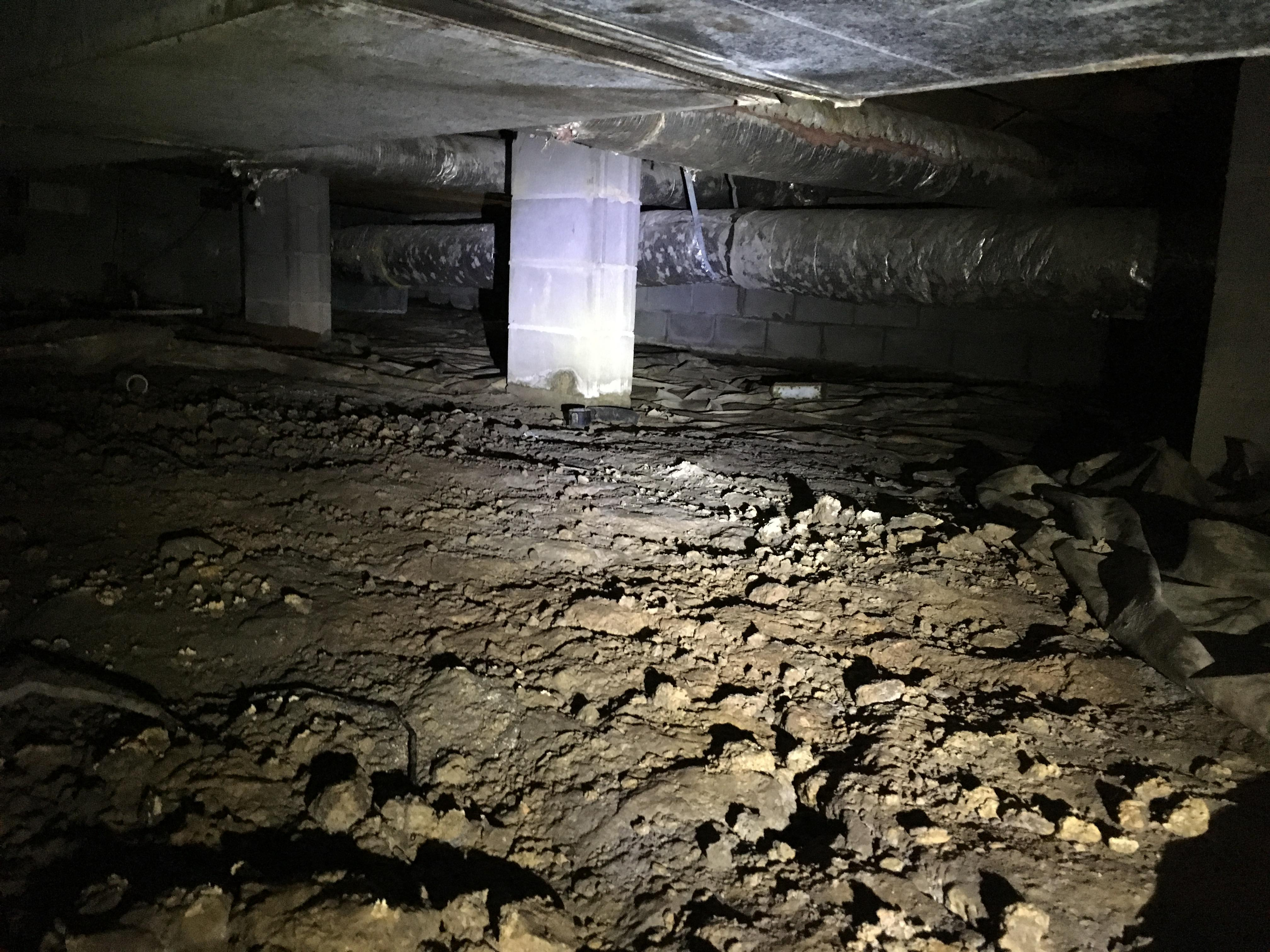 Muddy Crawlspace in Jasper