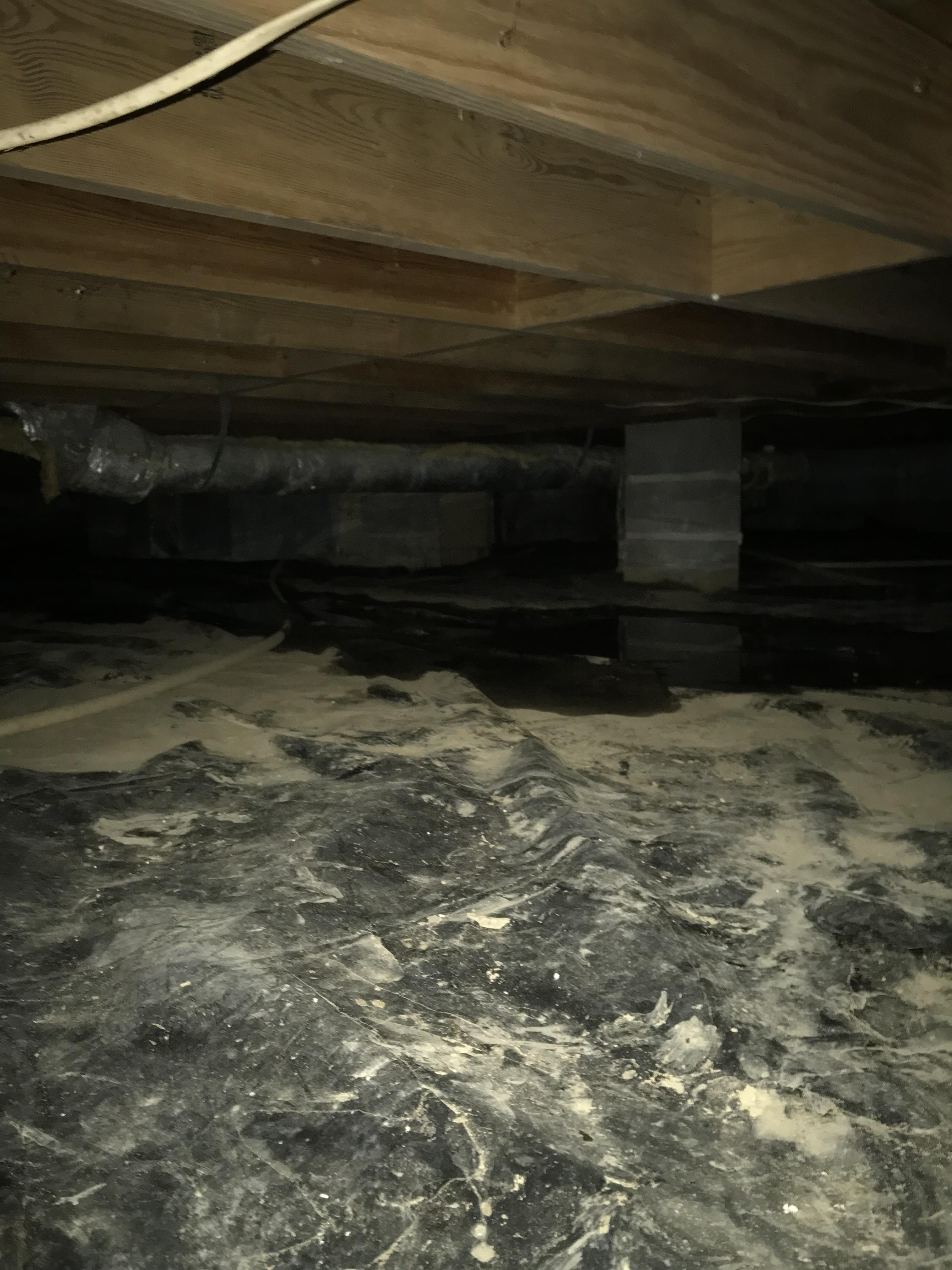 Standing water on plastic barrier in the crawlspace